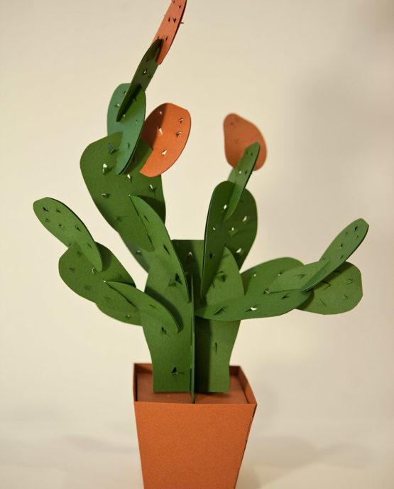 Cactus di carta da montare - Fico d' India