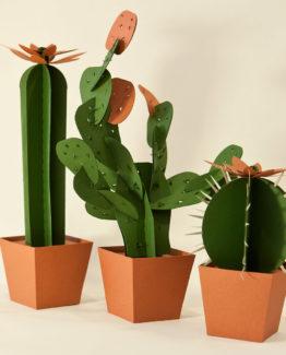 Cactus di carta da montare